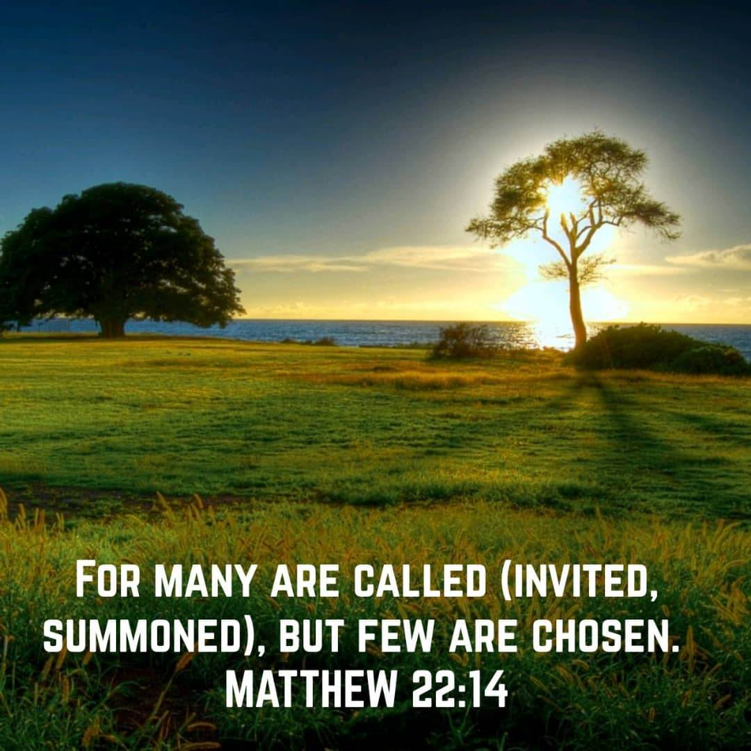 DAILY-DEVOTIONALS-PIC-Matthew-22.4-For-many-are-called-but-few-are-chosen